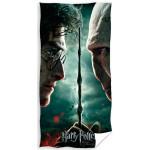 Osuška Harry Potter a Voldemort