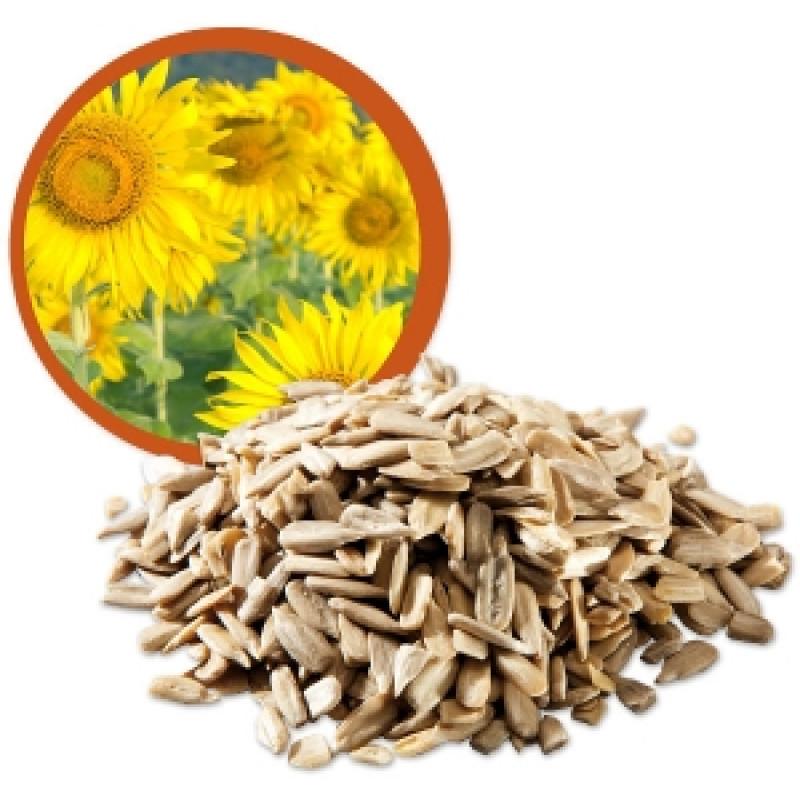 Slunečnicové semínko Bio