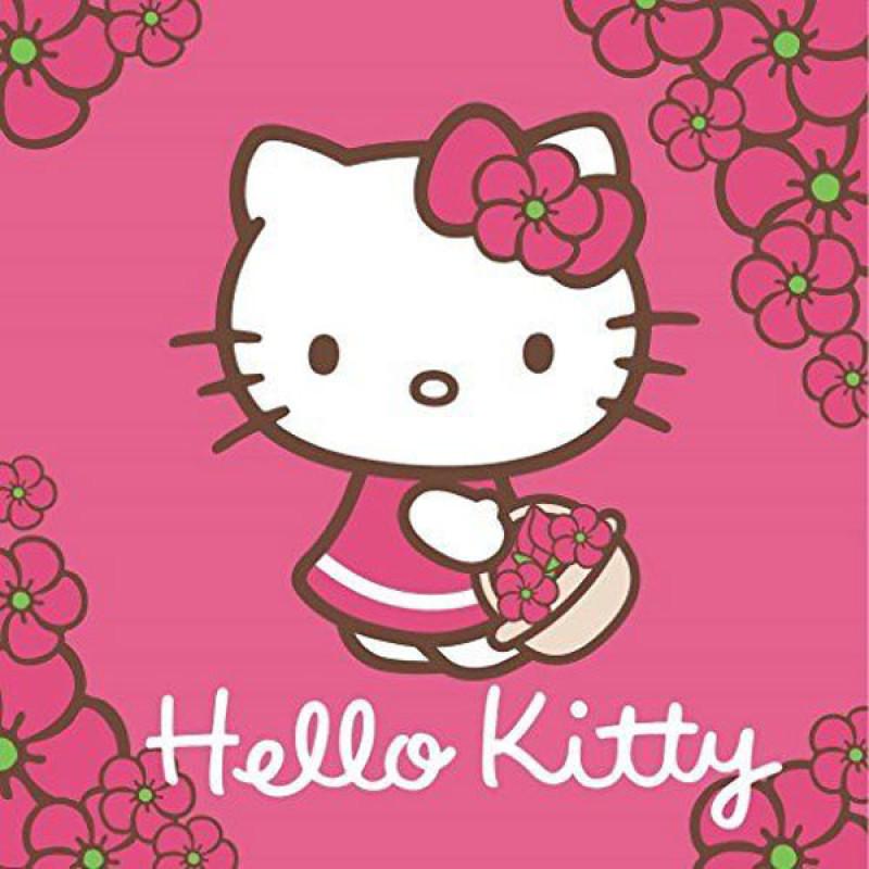 Magický ručníček Hello Kitty